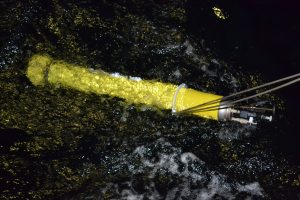 An Argo Float just being released from the R/V Thompson during the VISIONS'13 program. It will collect chemical measurements to depths of 1000 m, surfacing every 5-10 days to transmit these data back to shore via a satellite. Photo Credit: Mitch Elend, University of Washington.