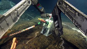 This 60-m extension cable will soon host a high-definition video camera to be deployed at the Mushroom hydrothermal vent (far left). White microbial mats along narrow fractures in the lobate lava flows mark areas where low-temperature diffuse hydrothermal fluids issue from the seafloor. The 7-function manipulator arms of the Canadian ROV ROPOS gently place the wet-mate connector holding plate on the seafloor. VISIONS '13 Leg 4  Photo credit: NSF-OOI/UW/CSSF.