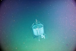 The CTD is recovered from a water depth of 2902 m at the base of the subduction zone at a site where full water column moorings will be deployed next year and connected to the cable. The ROV ROPOS attached a snaphook to the top of the CTD frame, securing it under the ROV for transport to the surface. Photo credit: NSF-OOI/UW/CSSF.
