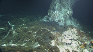 The thermistor array will be deployed at the base of the hydrothermal vent Mushroom, on the lower right side of this image on top of the yellow incubators.