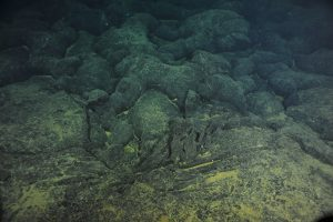 Cooling lava takes on different shapes, depending on the temperature and vigor of the flow. Here, lava lobes, sheet flow and jumbled flow types fill the frame near to the Ashes vent site on Axial. (VISIONS '13 Dive R-1613) Photo credit: OOI-NSF/UW/CSSF