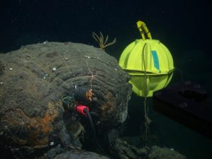 Short-period seismometers provide real-time information on earthquakes at mid-ocean ridges. In 2003, an array of seismometers was deployed on the Endeavour Segment of the Juan de Fuca Ridge, north of Axial Seamount. The one shown here, was deployed inside a borehole in a pillow basalt in the Mothra Hydrothermal Field, providing better coupling to the seafloor. This project was funded by the W.M. Keck Foundation.