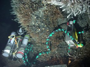 'Osmo' samplers draw hydrothermal fluids into small capillary-like tubing and allow long-term sampling of diffuse and black smoker hydrothermal fluids, as well as fluids from methane seeps. Osmo samplers in this image (white canisters) are attached in an in situ 'microbial' incubator deployed inside the walls of a black smoker chimney called Gremlin. The osmo samplers allowed collection of vent fluids for 1-year, while the microbial incubator collected hundreds of temperature measurements inside the wall of the black smoker. Novel microbes colonized mineral wafers and new sulfide precipitates inside 4 discrete chambers within the incubator. This experiment, lead by D. Kelley, University of Washington, was designed to look at the upper temperature limit of life.  Osmo samplers will be deloyed at the ASHES hydrothermal field and at the summit of Southern Hydrate Ridge during the VISIONS'13 expedition.