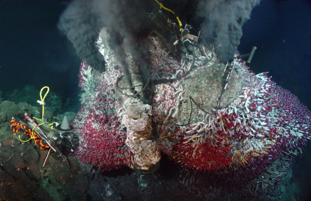 The temperature-resistivity instrument measures, in real-time, the temperature of black smoker fluids (>400°C) and the resistivity of the fluids as a proxy for chlorinity. Vents at Axial Seamount are boiling, producing fluids that are very low in chloride content (salts). Boiling is an important processes because it enhances precipitation of precious metals in seafloor black smokers.