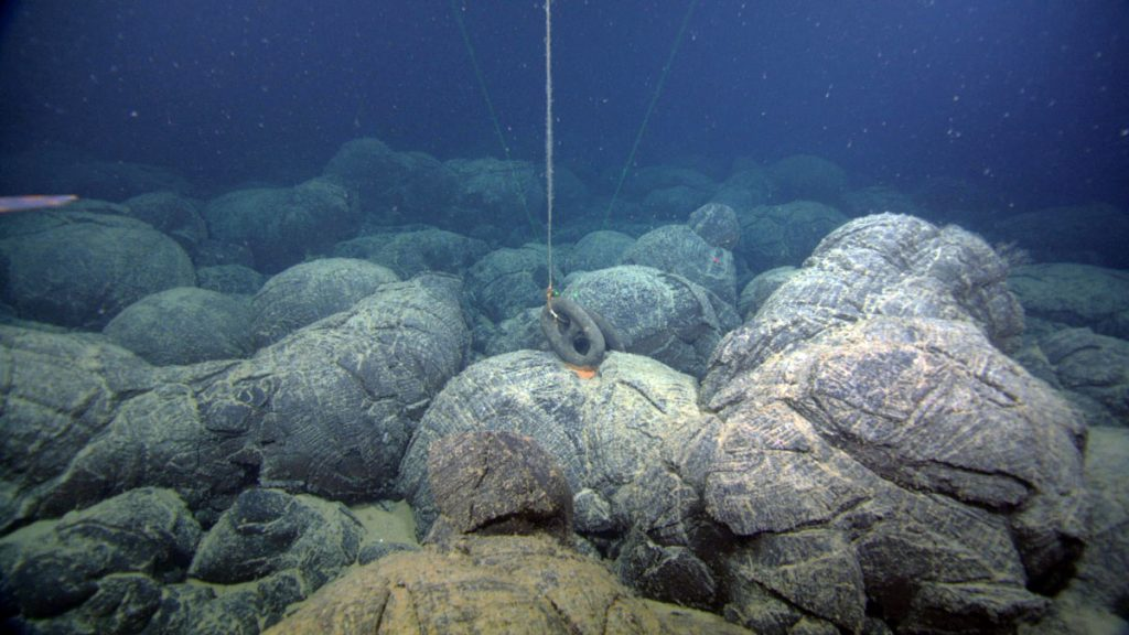 An anchor for an expendable transponder rests atop a pillow basalt flow. The transponder was recovered.