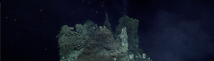 Theme V:  Sulfide Chimneys and Hydrothermal Vents