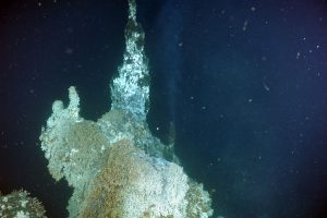 The black smoker Inferno rises 4 meters above the seafloor in the ASHES hydrothermal field at Axial Seamount.