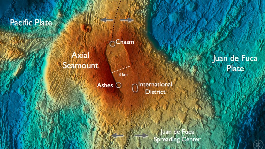 Axial Volcano hosts numerous hydrothermal fields and sites of diffuse flow that support dense animal and microbial communities.