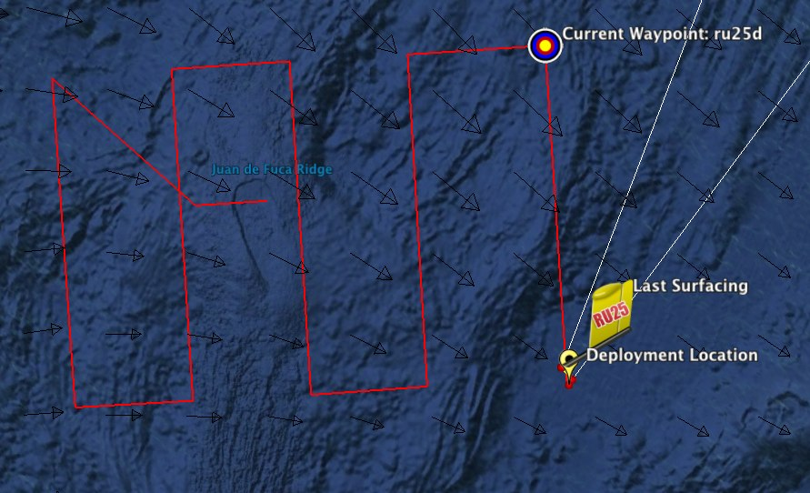 The dive route for the Slocum Glider at Axial Seamount.