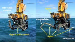 The ROV ROPOS with the digital still camera and lights repositioned to optimize the vehicle for a down-looking still image survey. Images obtained during this survey will be stitched together to form a photomosaic which will give scientists on board a visual map of an extensive portion of Southern Hydrate Ridge.
