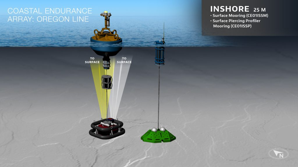 BO-Endurance-Array-OR-Inshore