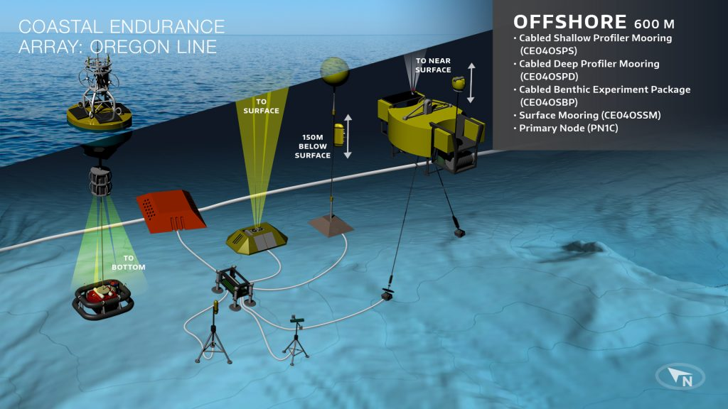 BO-Endurance-Array-OR-Offshore