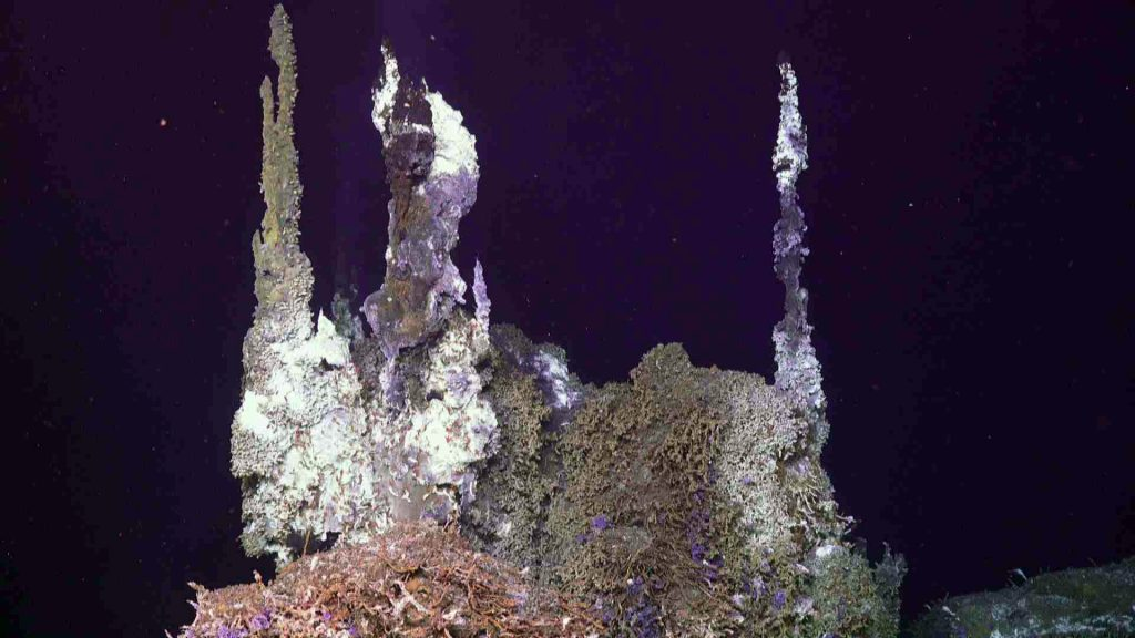 """'Chimlets"""" atop the hydrothermal edifice called Inferno vent 300°C fluids into the near-freezing surrounding ocean water. Credit: UW/NSF-OOI/WHOI, V19."""
