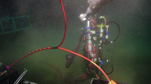 A rattail investigating the newly deployed CTD and optical attenuation/absorption tripod at Slope Base. Photo Credit: UW/NSF-OOI/WHOI, V19