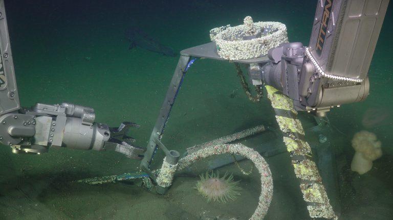 Oregon Shelf hydrophone recovery. Photo Credit: UW/NSF-OOI/WHOI, V19