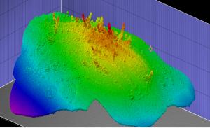 Southern Hydrate Ridge 3D Image.  Chris William, University of Washington V19