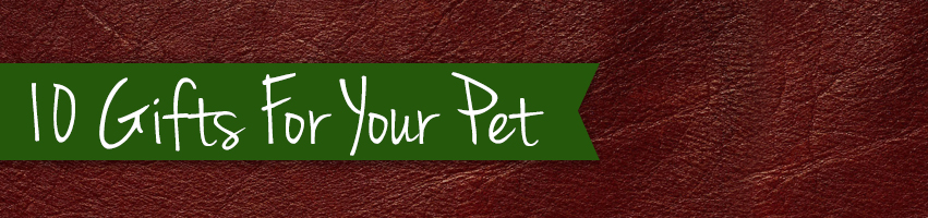 10 Gifts for your pet