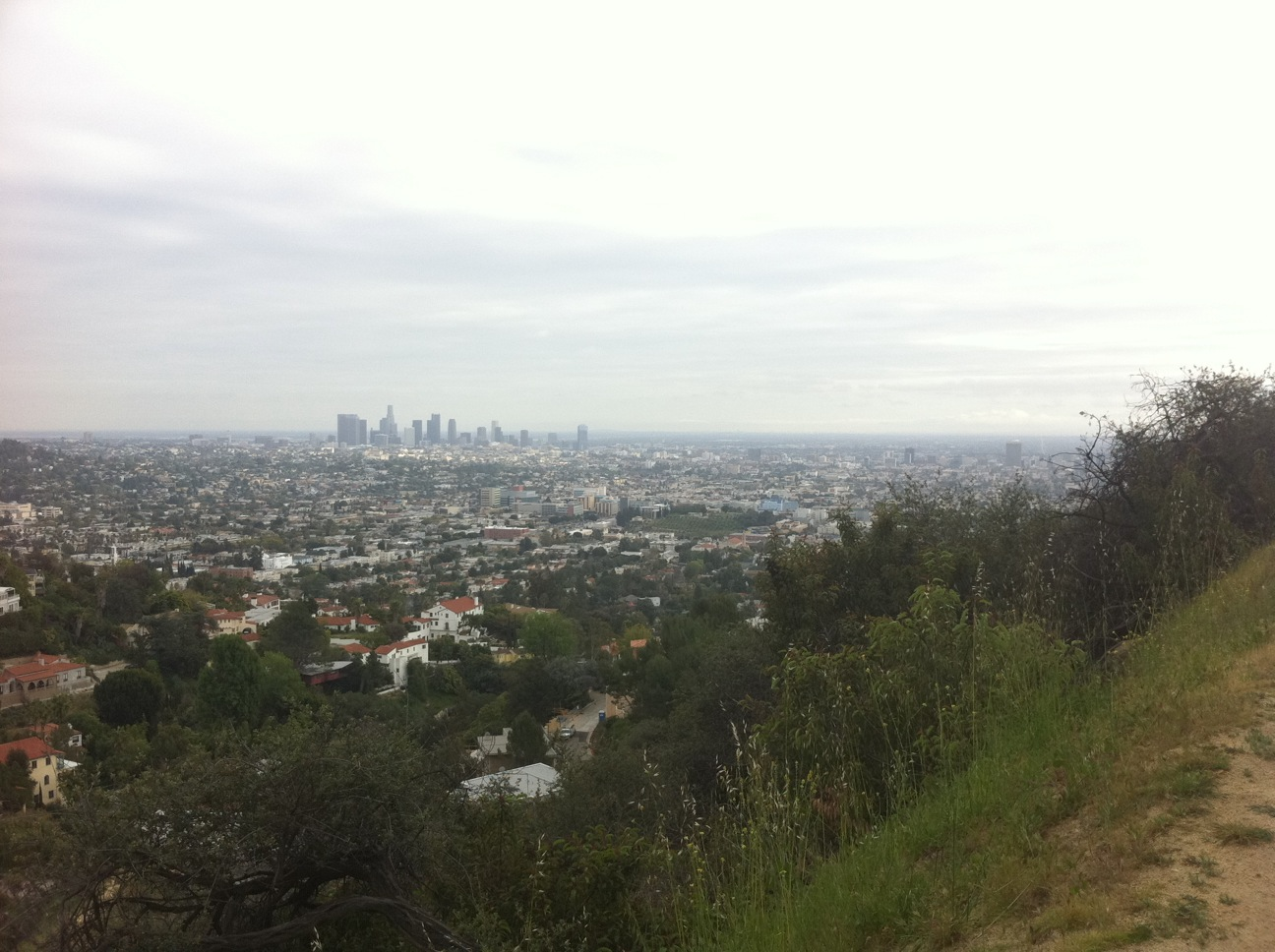 The view of downtown L.A. from Griffith Park.