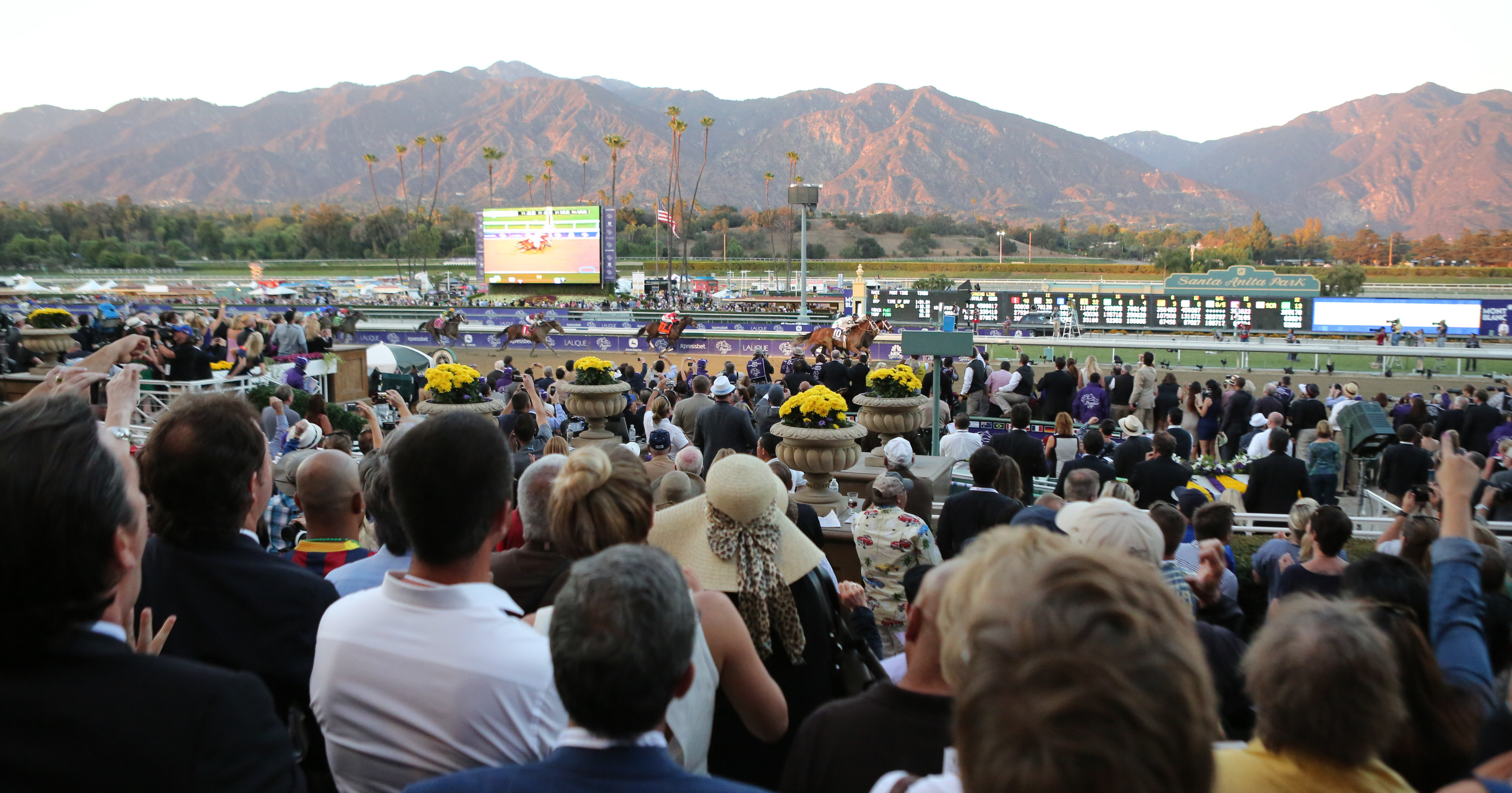 Go Metro Gold Line To The Breeders Cup At Santa Anita Park