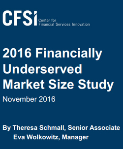 2016 Financially Underserved Market Size Study