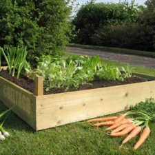791-untreated-garden-bed.jpg