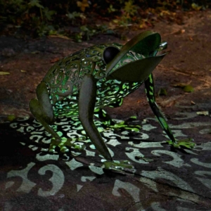 Solar Metal Silhouette Frog Garden Light