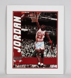Chicago Bulls Michael Jordan Signed 16x20 Photo