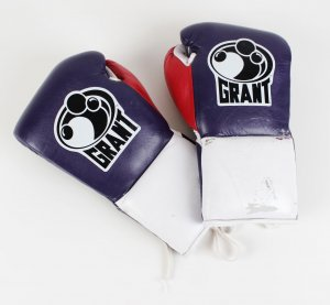 4/10/2010 Evander Holyfield Fight Worn Gloves Vs. Francois Botha To Win the WBF Heavyweight Title Provenance (Holyfield) Letter