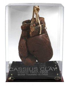 cassius clay gloves