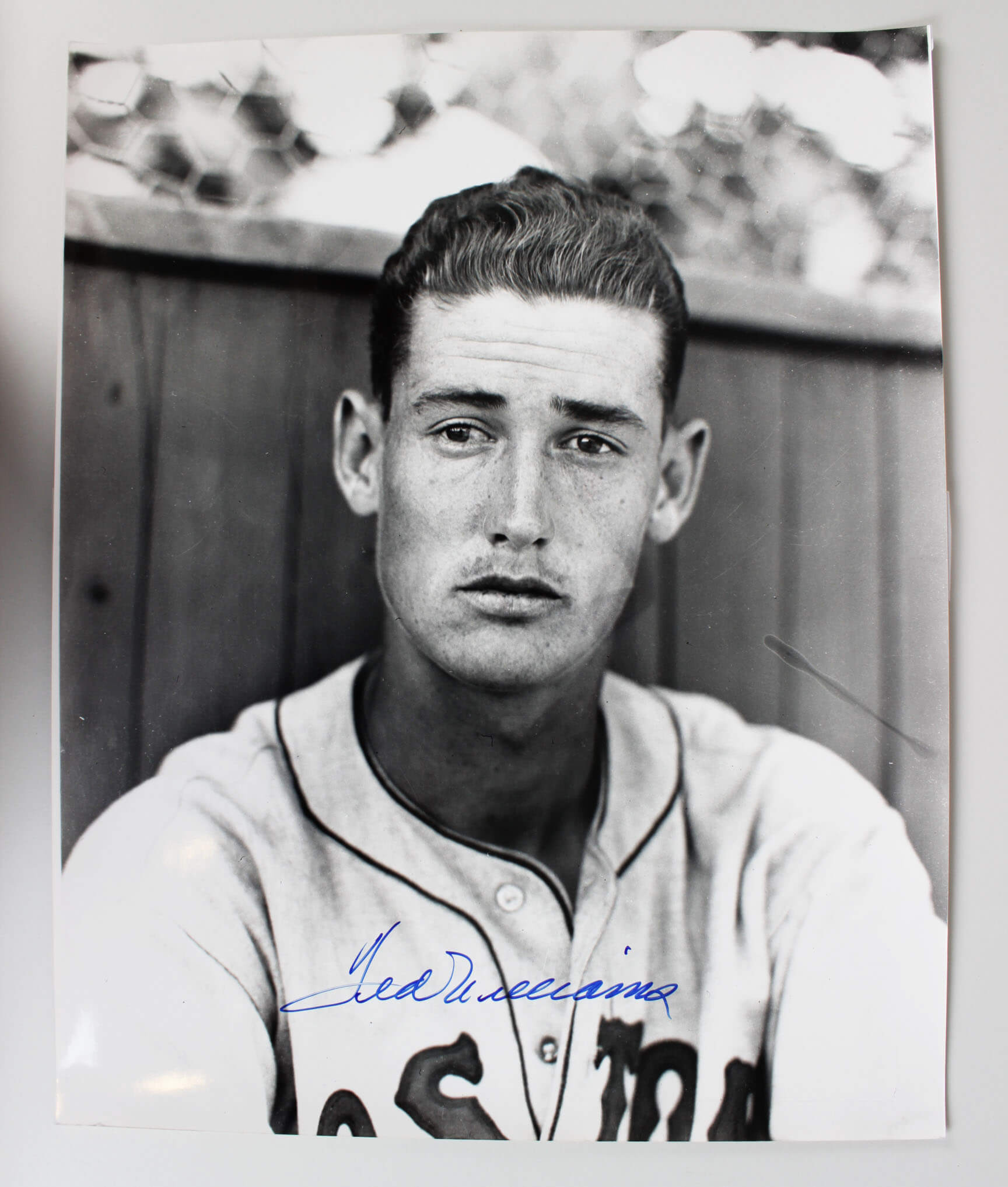 Boston Red Sox Ted Williams Signed 16x20 Photo - JSA