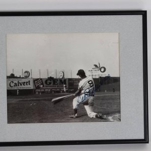 "1946 Boston Red Sox Ted Williams Signed 15"" x 12"". B&W Photo Disply"
