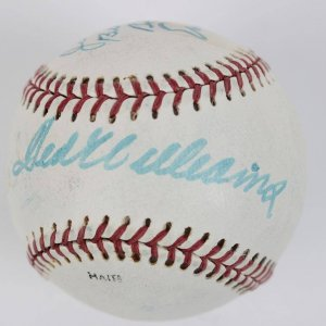 Hall of Fame Multi-Signed Baseball -Ted Williams