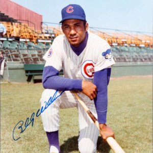 Chicago Cubs Billy Williams Signed Hall Of Fame Photograph (8X10 )