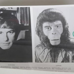 Roddy McDowall Signed 8x10 B&W Planet Of The Apes Series On CBS-TV Photo