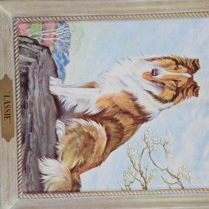 "1945 ""Son Of Lassie"" 9x12 Movie Promotion Of Lassie M-G-M's In Technicolor Orignal Mailing Evelope"