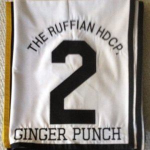 Ginger Punch Ruffian Handicap Saddle Cloth