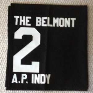 AP Indy Belmont Stakes exercise saddle cloth