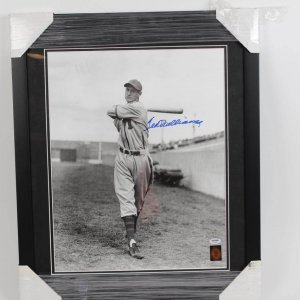 Vintage Minor League Padres Ted Williams Signed 16x20 Display COA PSA