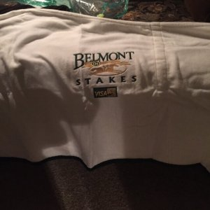 War Emblem Belmont Stakes Fly Sheet Blanket