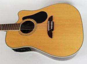 jani lane's guitar