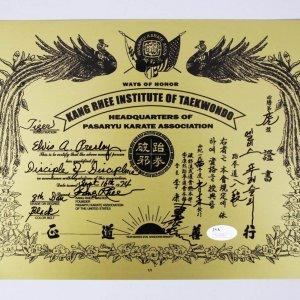 Sept. 16, 1974 - Elvis Presley Black Belt Certificate 1/1 Printing Plate Signed by Master Kang Rhree JSA COA