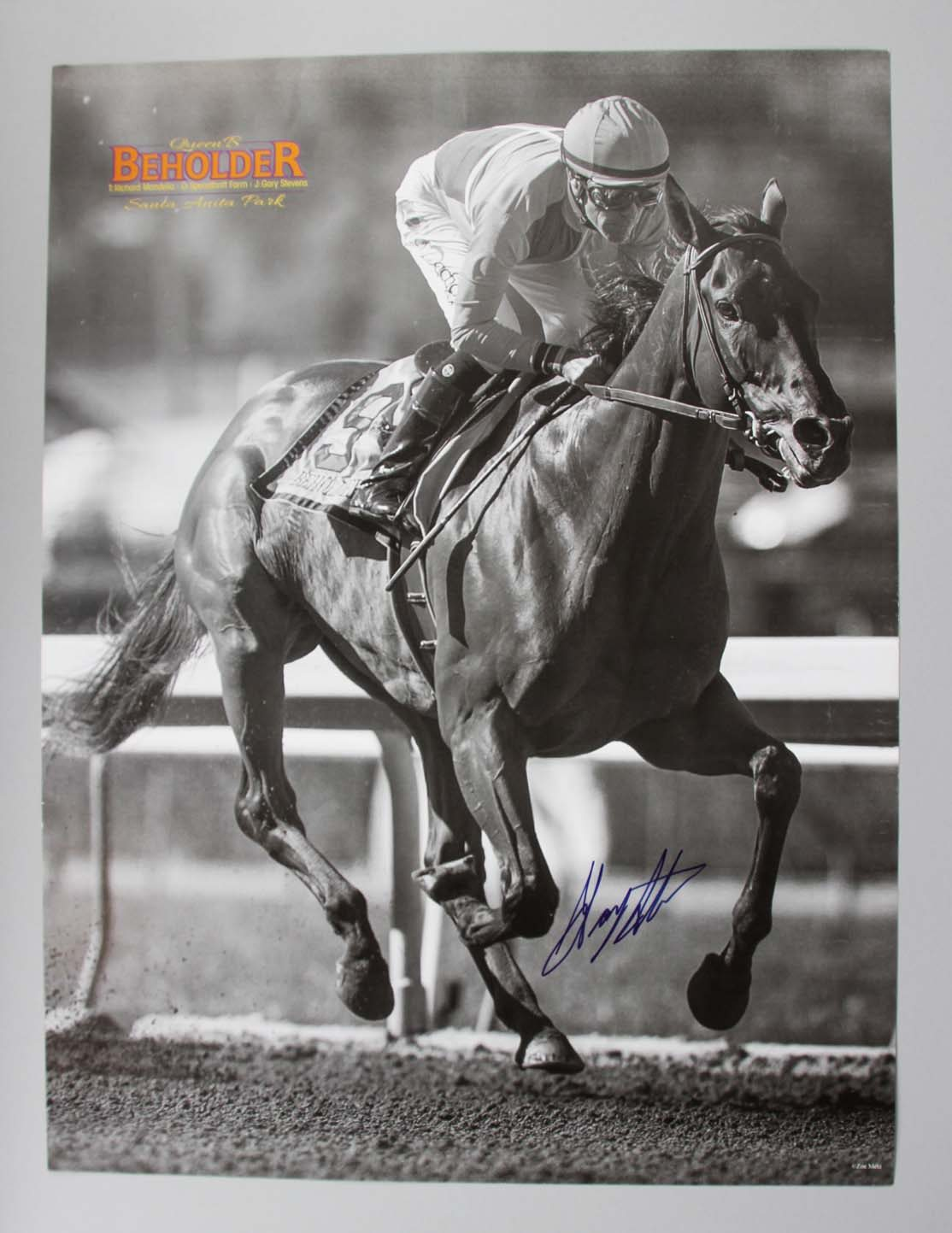 Preakness Stakes - Gary Stevens Signed 16x20 Horse Racing Photo