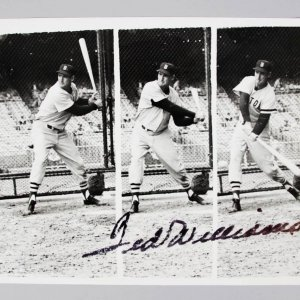 Ted Williams Signed 8x10 News Photo