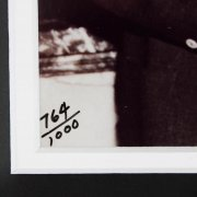 Ted Williams Signed LE 764/1000 Photo 14x16 Display