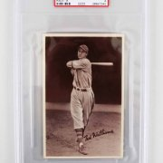 Scarce Ted Williams 1939 Goudey Premium (R303-A) Rookie Card (PSA VG-EX 4)