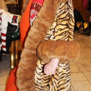 Liberace Stage Worn Tiger Fur Coat - Provenance LOA