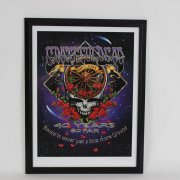 """2005 Grateful Dead """"40 Years So Far"""" Poster 20x27 Display LE 461/500 Signed by Artist Richard Biffle"""