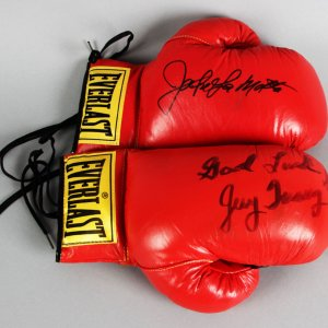 Jake LaMotta & Jerry Quarry Signed Boxing Gloves - JSA