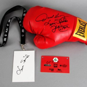 Boxing Glove Multi-Signed & (2) Press Passes - Ken Norton, Leon Spinks, etc. - JSA