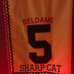 Sharp Cat winning Beldame Stakes - 119 Beyer - Saddle cloth